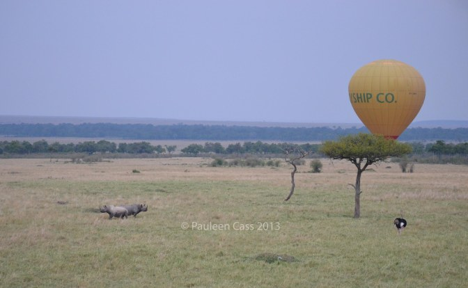 The great thing about two balloons being in flight is that you can get one in your photos. The two rhino had gone into defensive mode while the ostrich appeared indifferent.